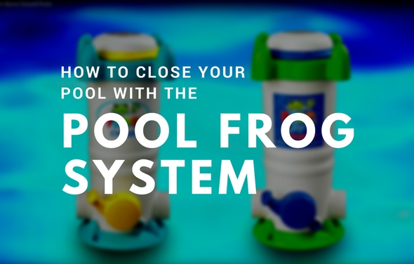 Pool Frog Leap Mineral System The Factory