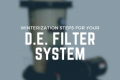 D.E. Filter System