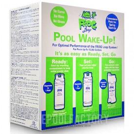 Pool Frog Wake Up